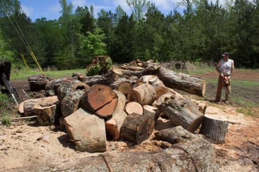 Wood Documentary